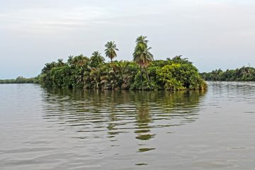 Gambia: Non-stop rosundtrip flight from Germany for 160 Euros