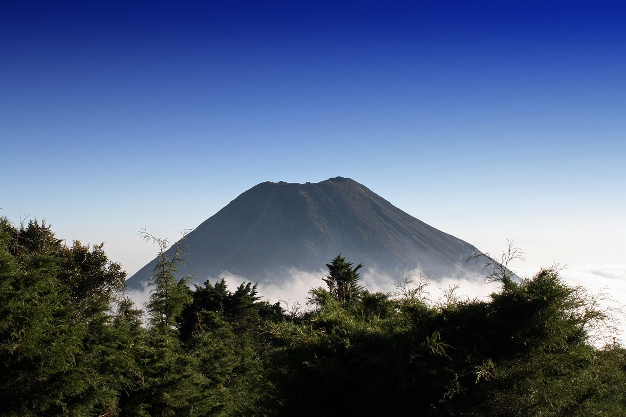 EL SALVADOR:   ROUNDTRIP FLIGHT FROM SPAIN FOR 297 EUROS WITH CHECKED BAG INCLUDED
