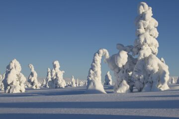 Know better the iregion of Lapland (Finland) by Virtual tour