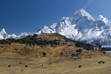 Know better the Asian country of Nepal by Virtual tour